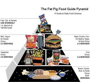 produk babi